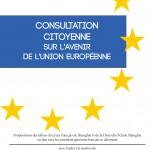 Consultation Citoyenne VF