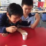 Semaine du gout 2019 Pudong LFS