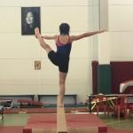 Prozap gymnastique 5