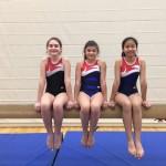 Prozap gymnastique 8